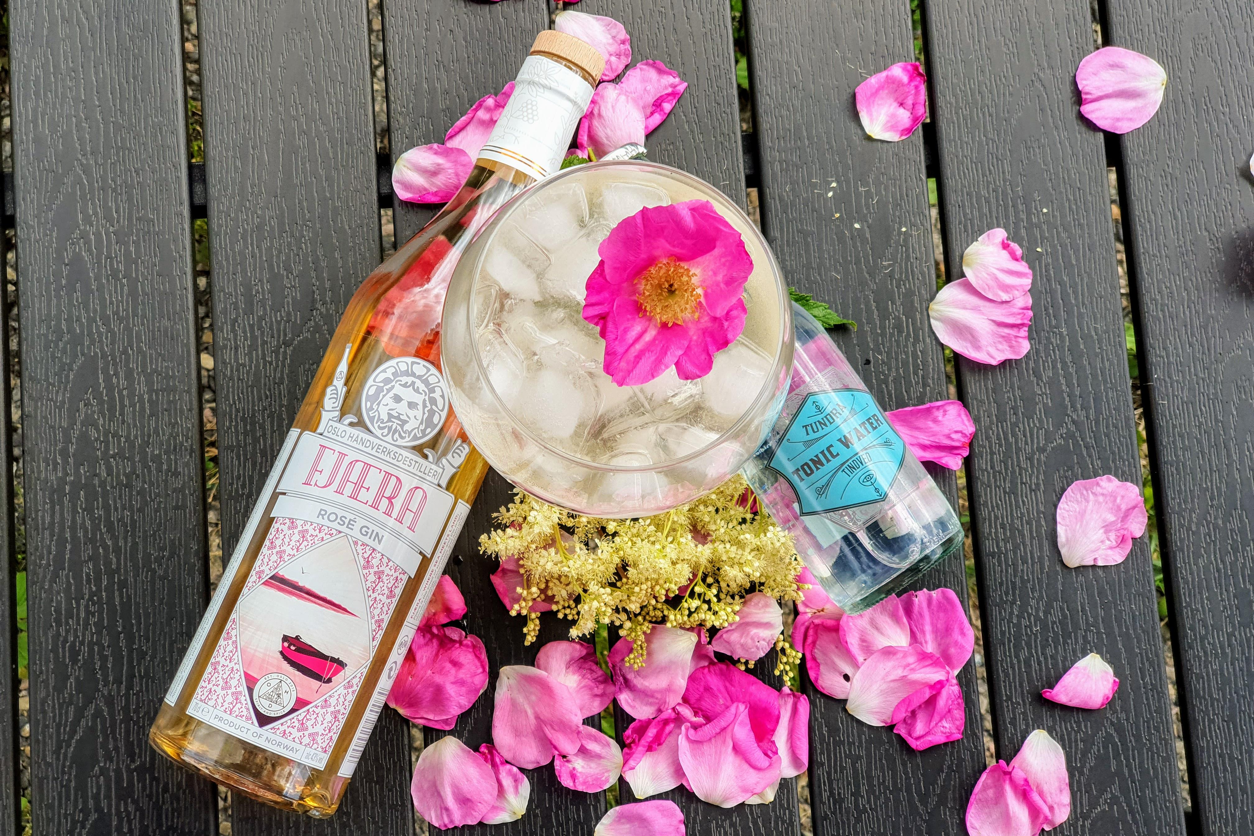 Rynkerose, mjødurt og gin and tonic: Foto: Alt om gin.